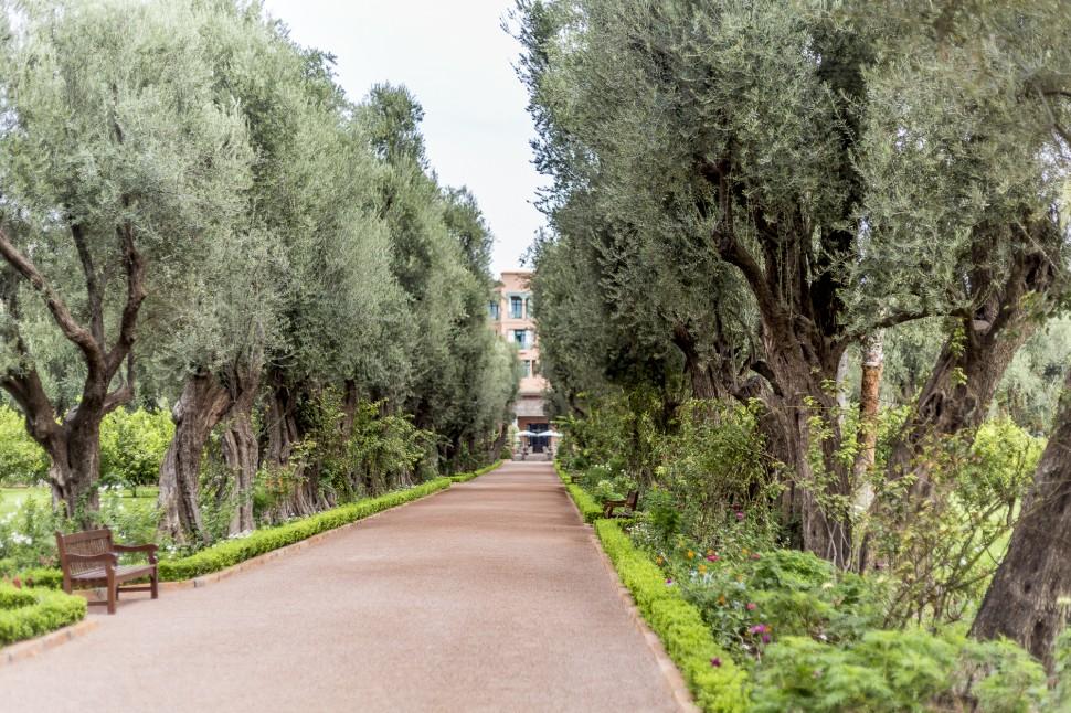la-mamounia-garden-1