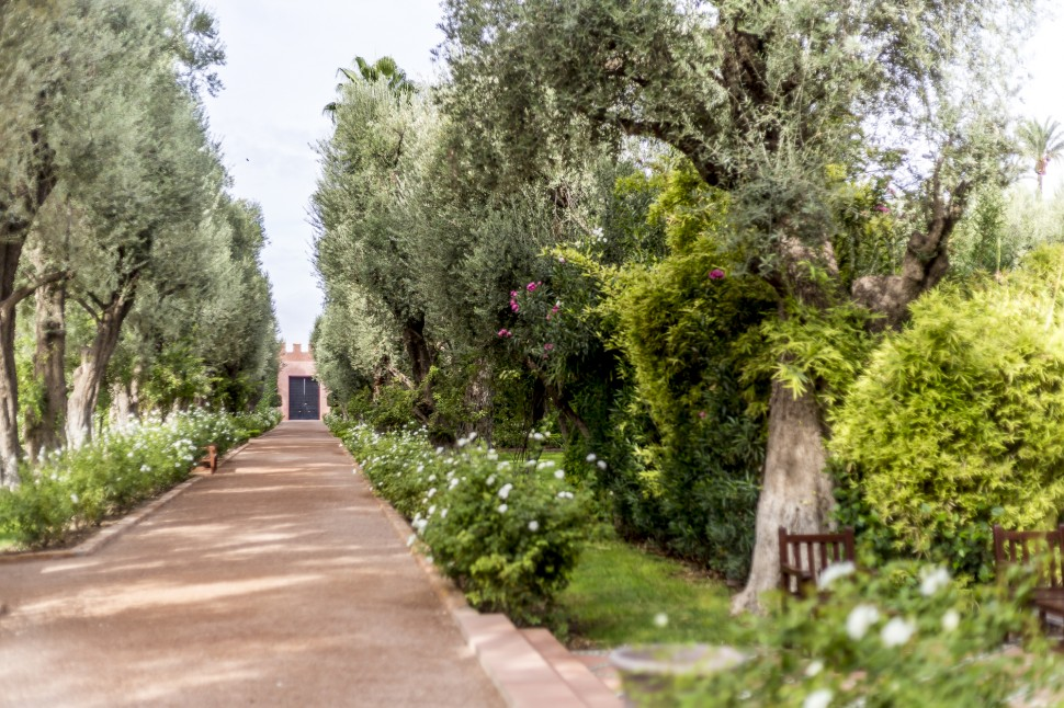 la-mamounia-garden-5