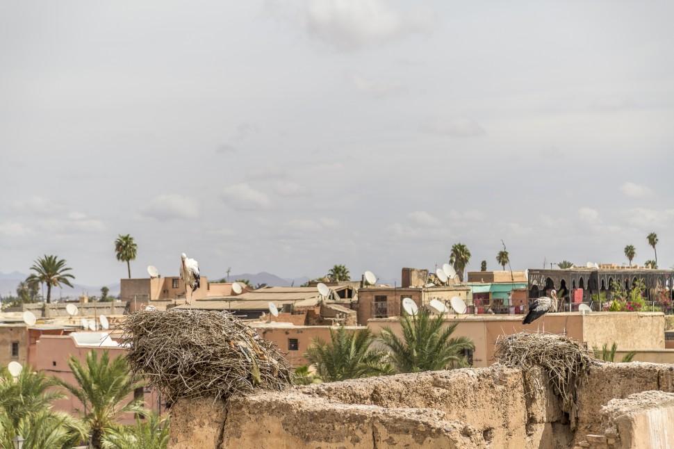 marrakech-palais-el-badi-2