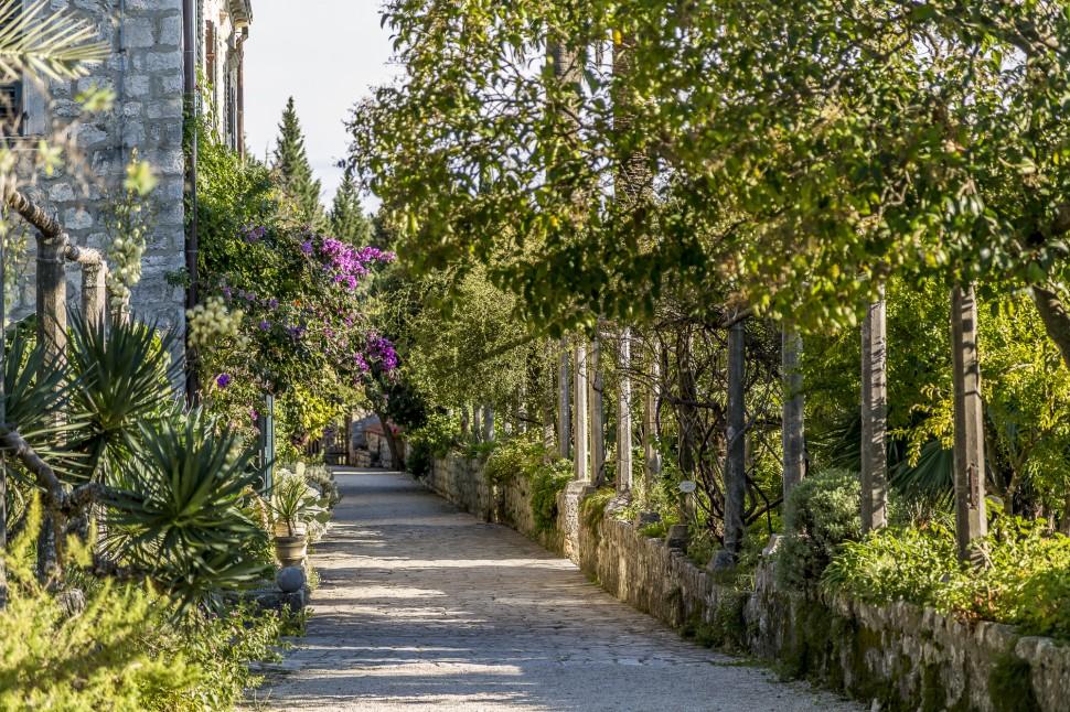 Arboretum-Trsteno-2
