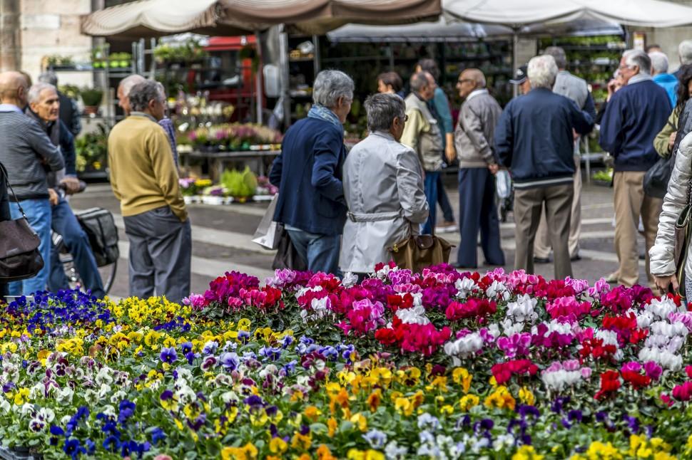 cremona-Blumenmarkt