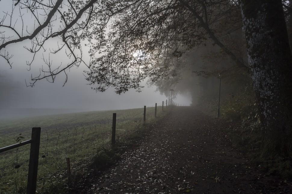 Nebelstimmung beim Friesenberg