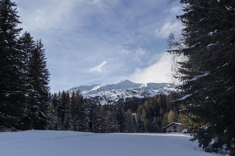 lenzerheide-winterwandern-2