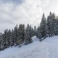 lenzerheide-winterwandern-3