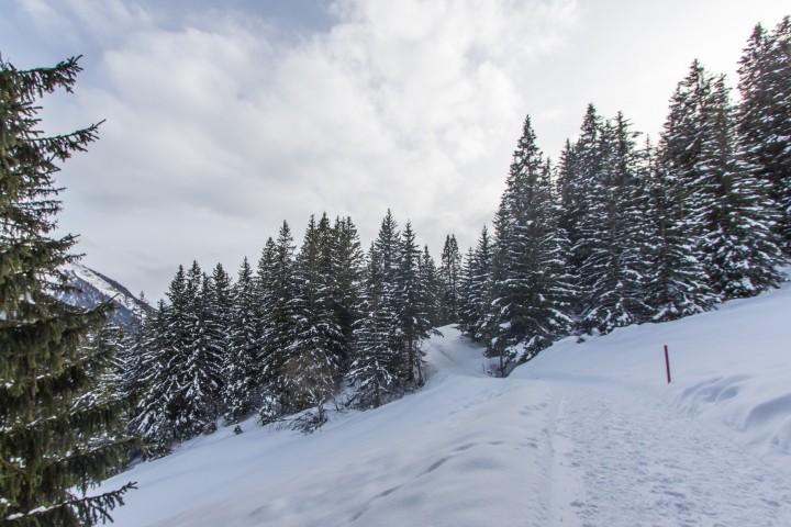 Winterzauber à la Lenzerheide