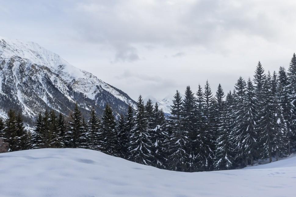 lenzerheide-winterzauber
