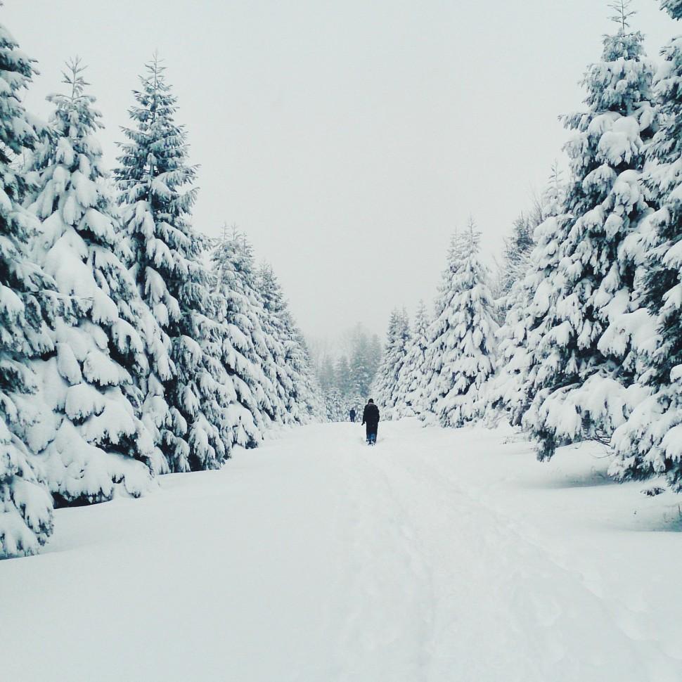 Dezember-Winter-Uetliberg