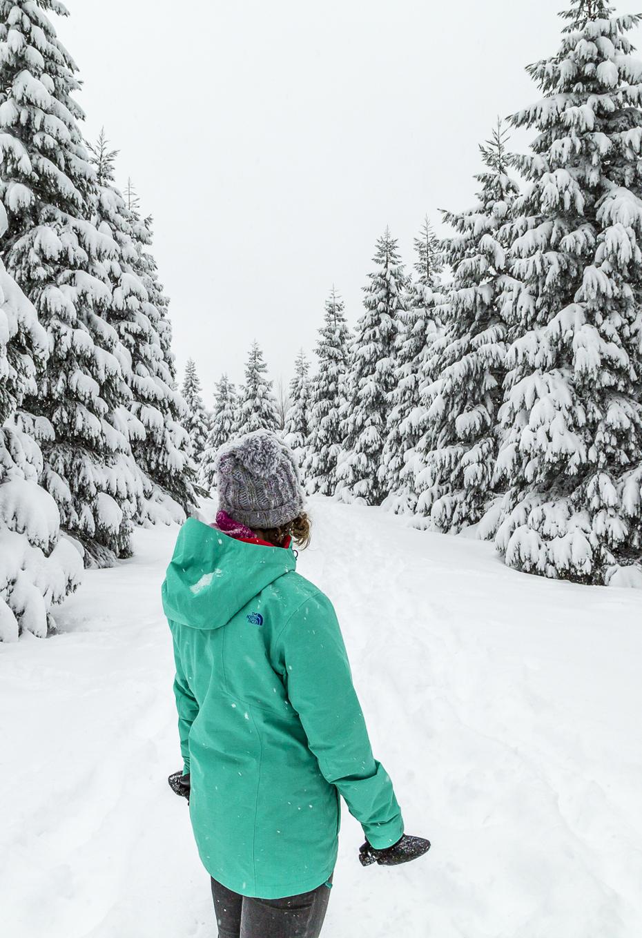 Uetliberg-Zürich-Winter