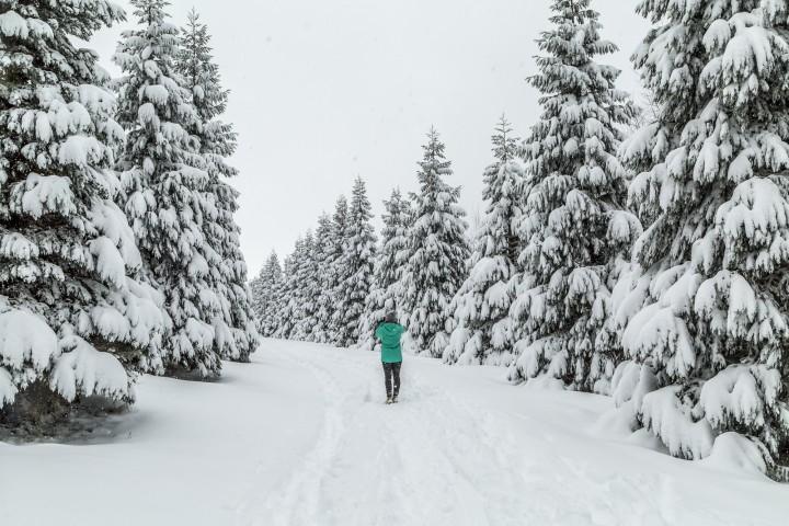 Winterwandern auf dem Uetliberg in Zürich