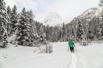 Mont-Blanc Express - Winterplausch direkt
