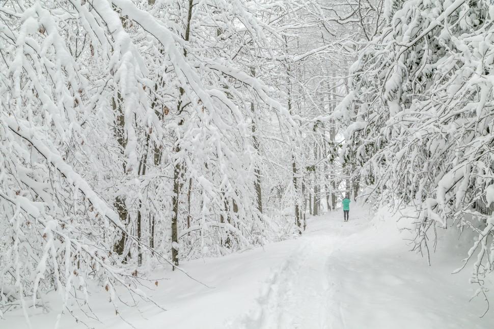 Zürich-Uetliberg-Schnee