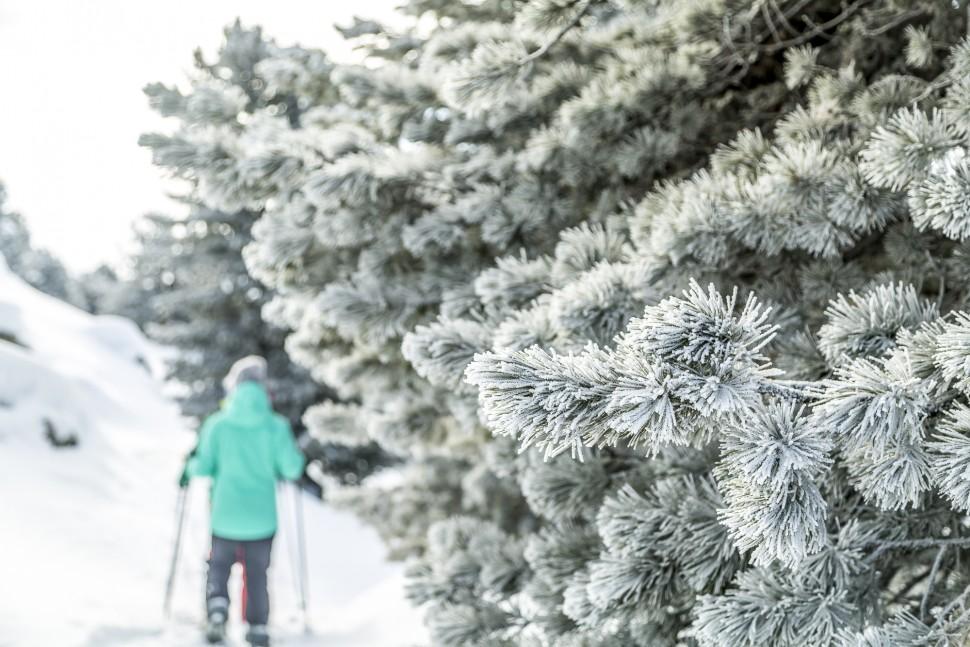 AletschArena-Schneeschuhtour