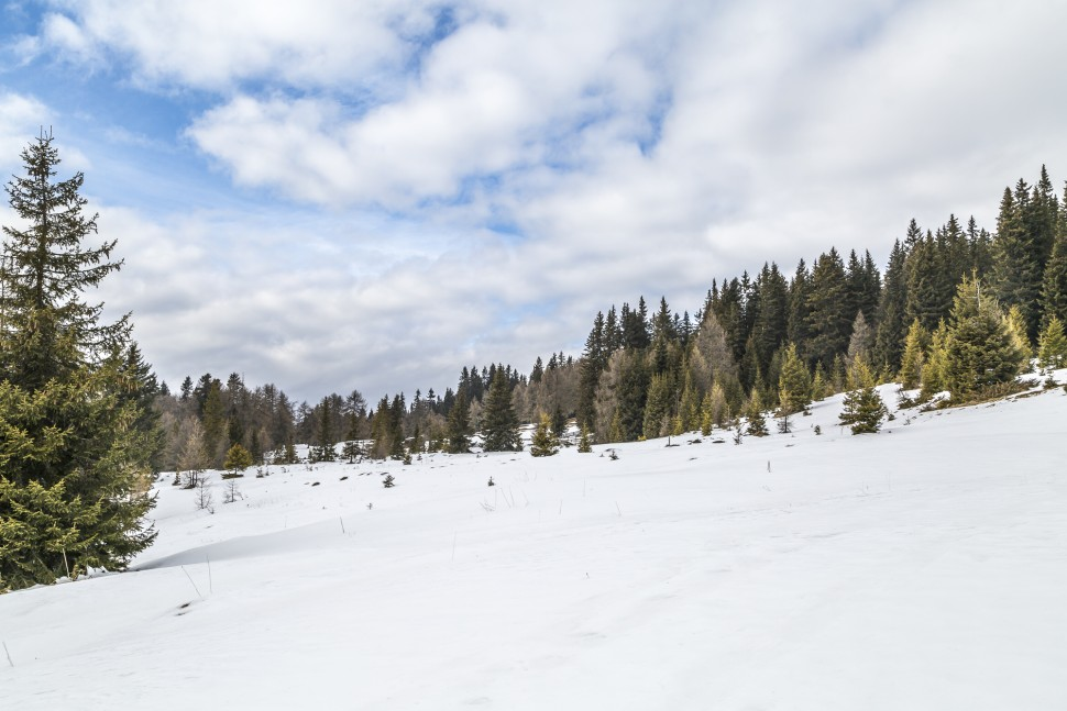 Pustertal-Natur-Toblach
