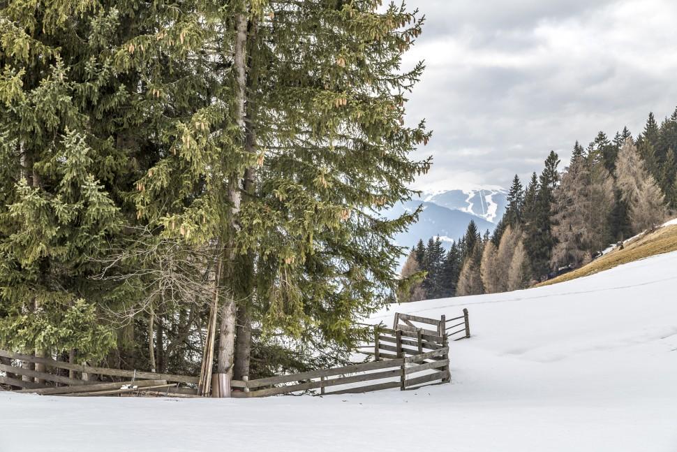Pustertal-Schneeschuhtour