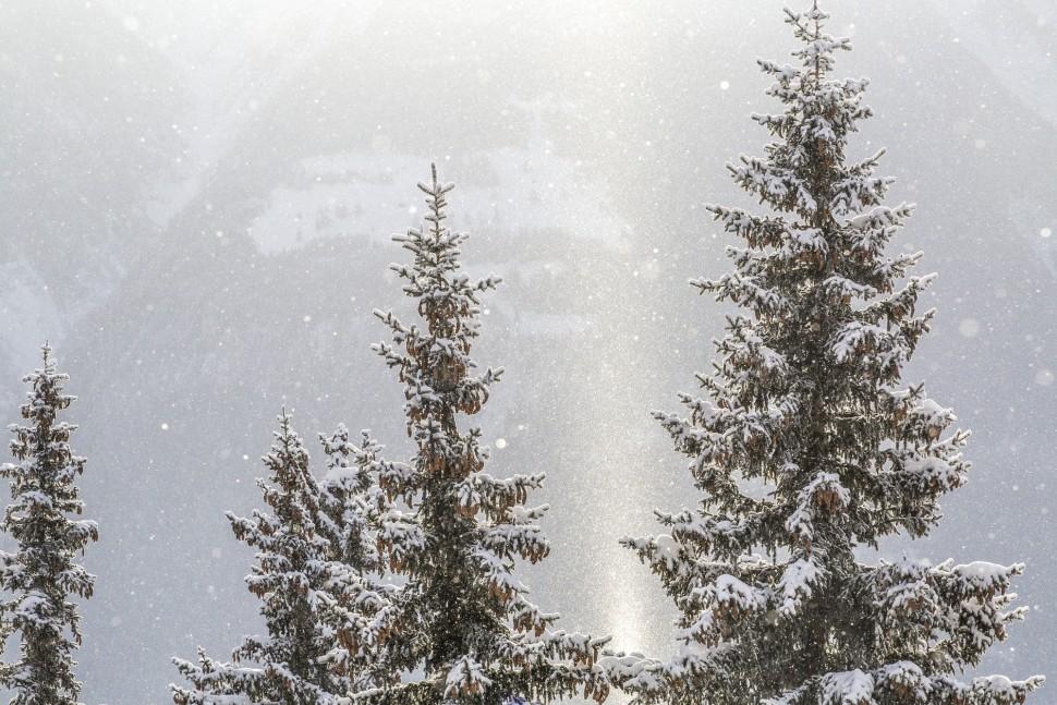 Riederalp-Schnee