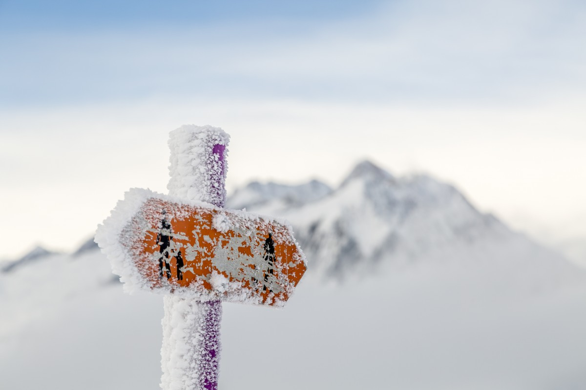 Schneeschuhtipp Aletschwald – stilles Glück gefunden