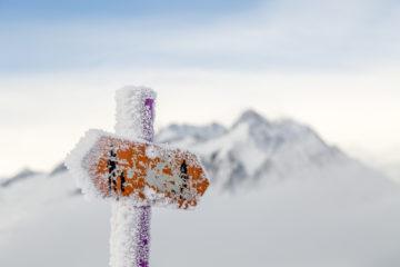 Schneeschuhtipp Aletschwald - stilles Glück gefunden