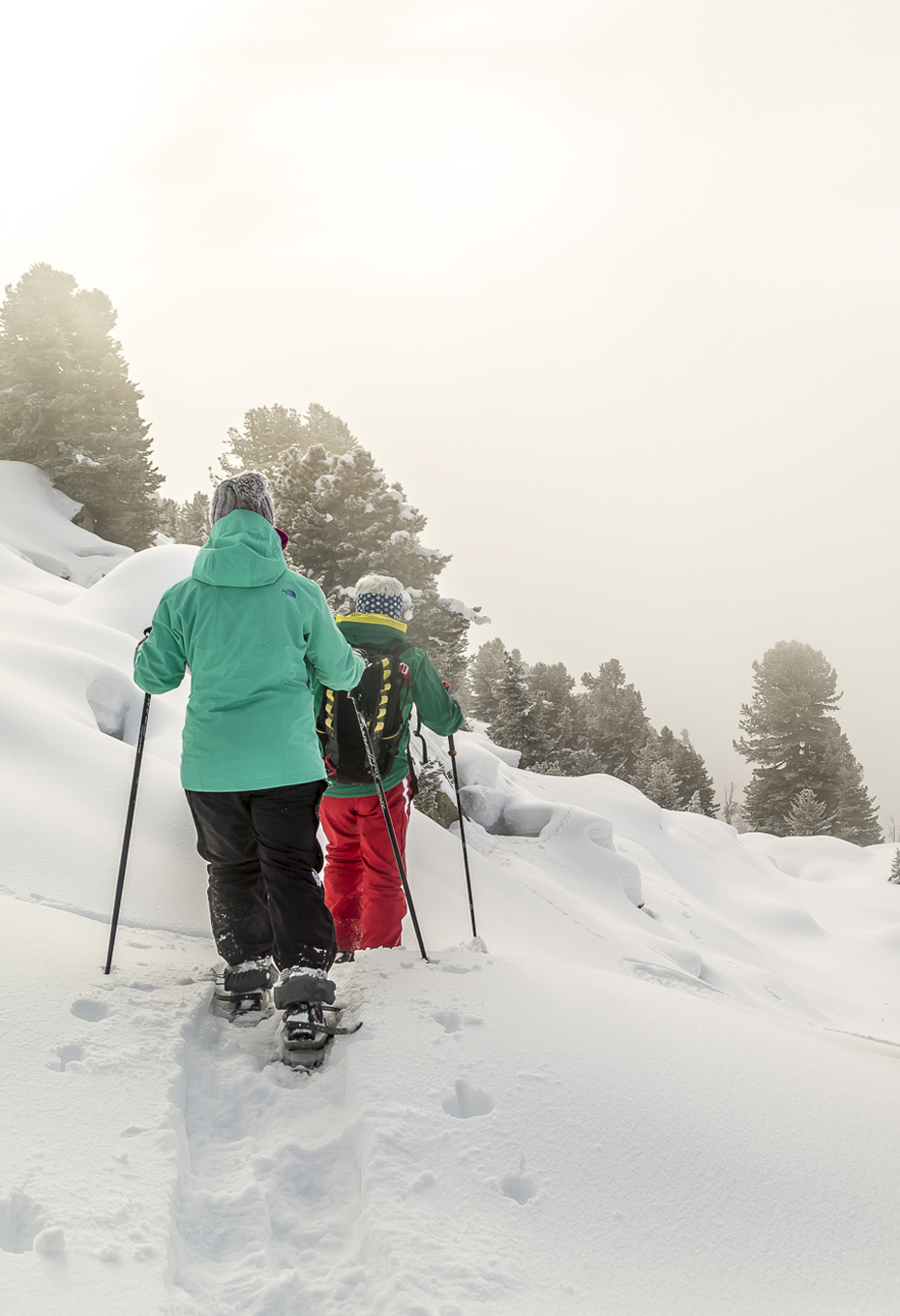 Schneeschuhtour-AletschArena