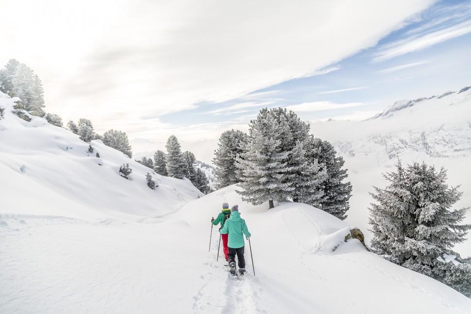 Schneeschuhtour-Aletschwald
