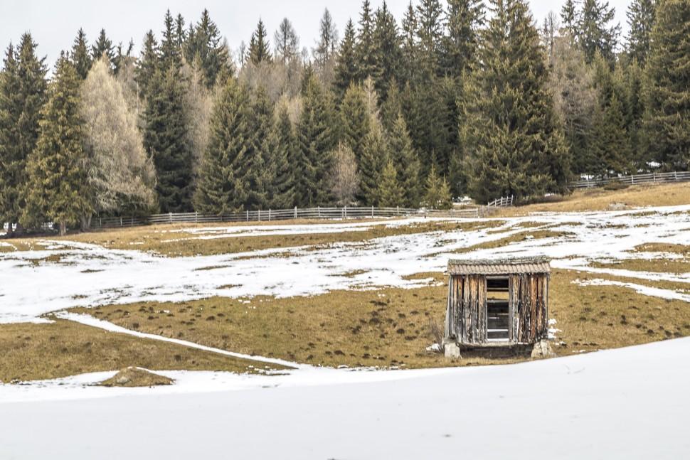 Toblach-Feld-Wald-Wiesen-Schneeschuhtour