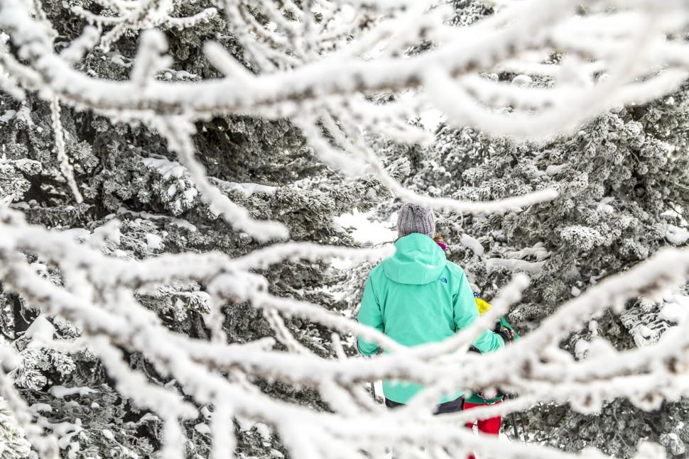 Winter-AletschArena