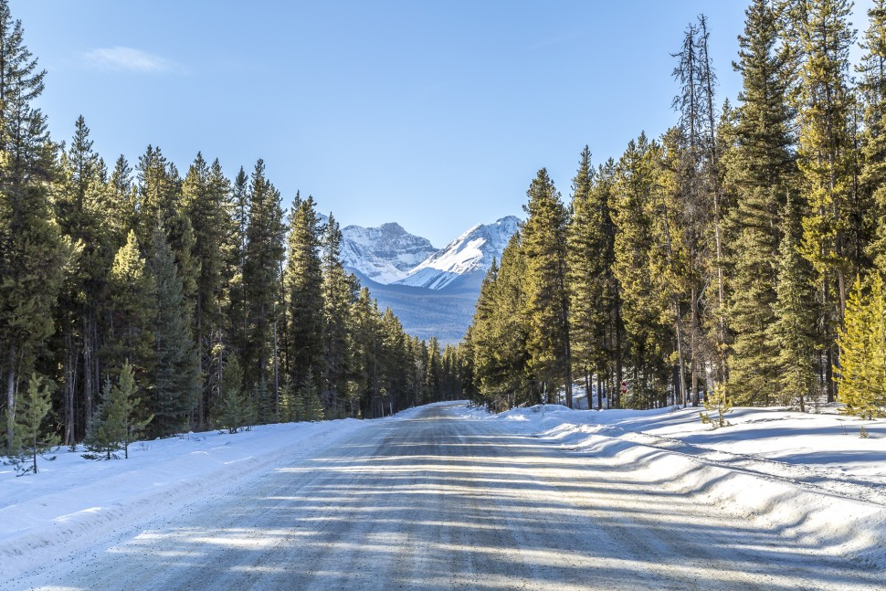 Bow-Valley-Parkway-5