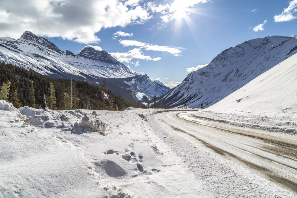 icefields-parkway-28