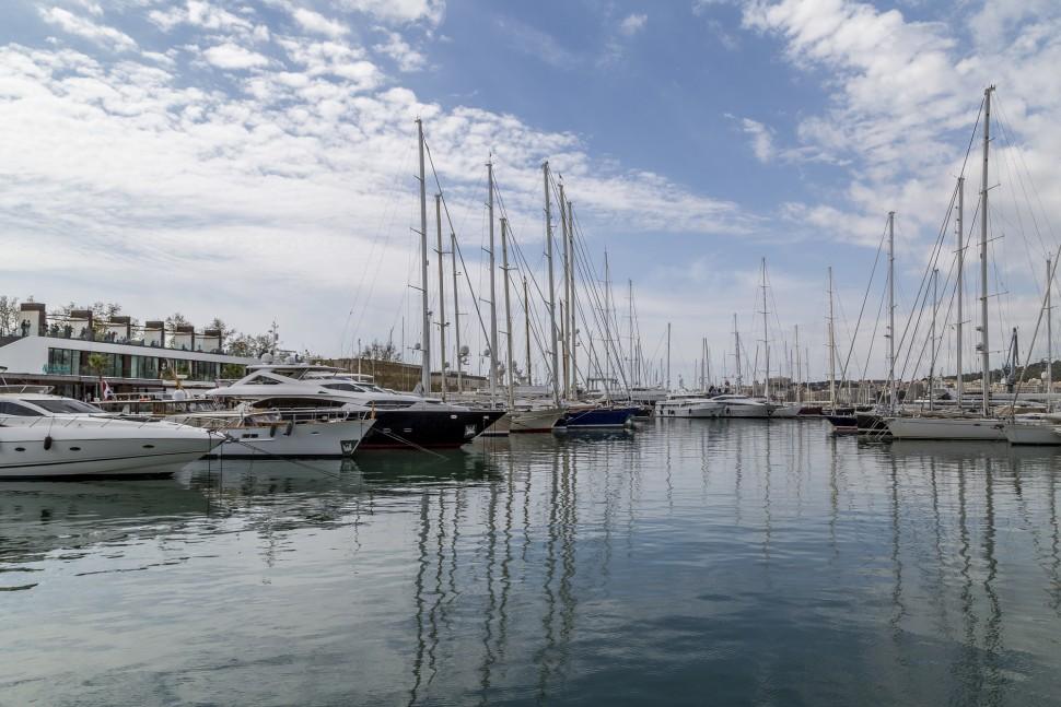 Hafen-Palme-de-Mallorca