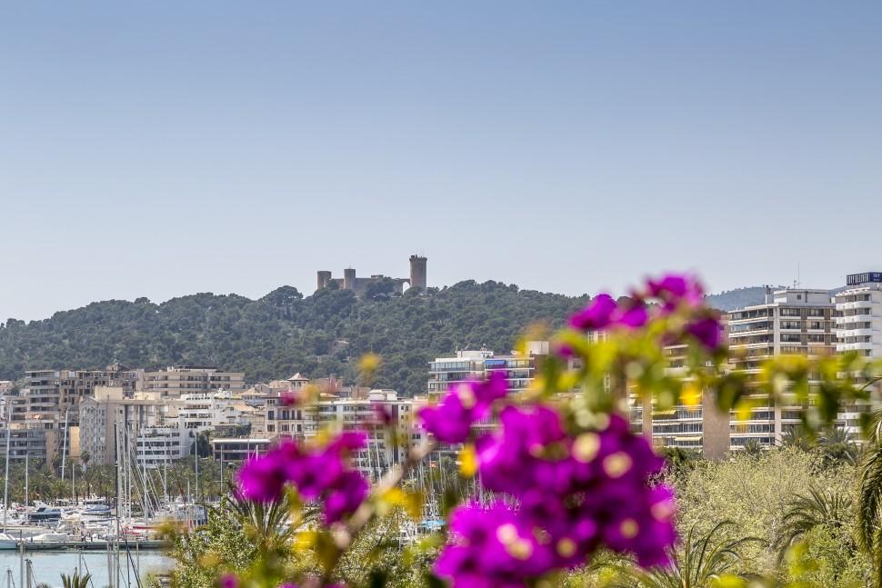 Palma-De-Mallorca-Fruehling