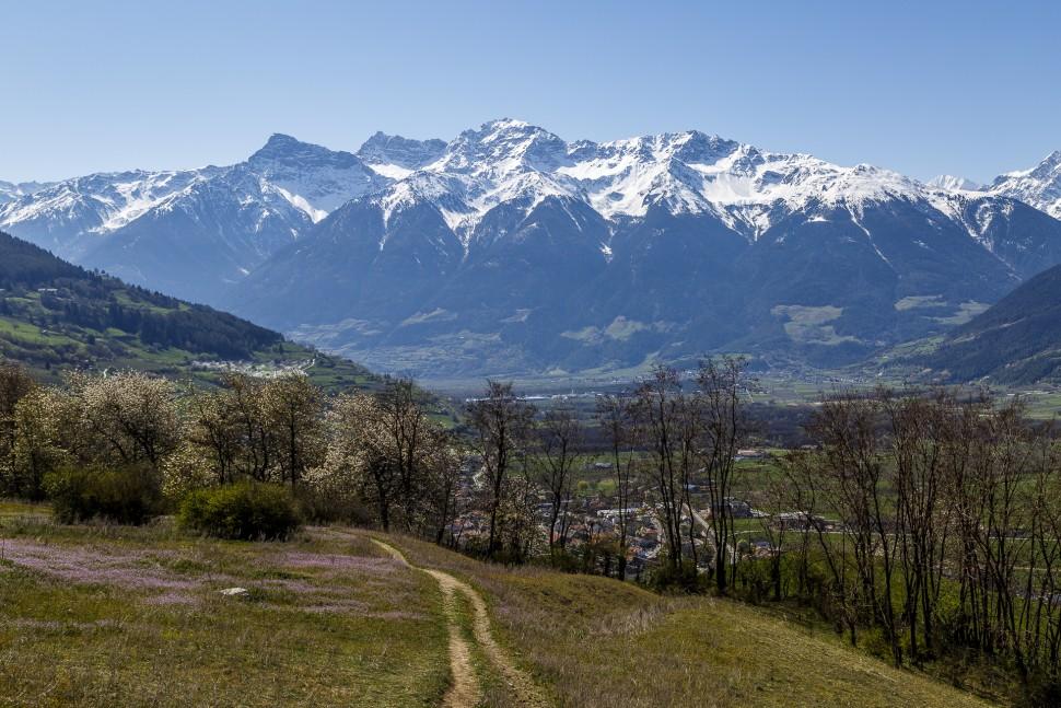 Vinschgau-Panorama