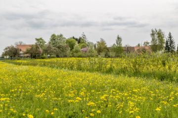Wanderung zur Kartause Ittingen im Thurgau