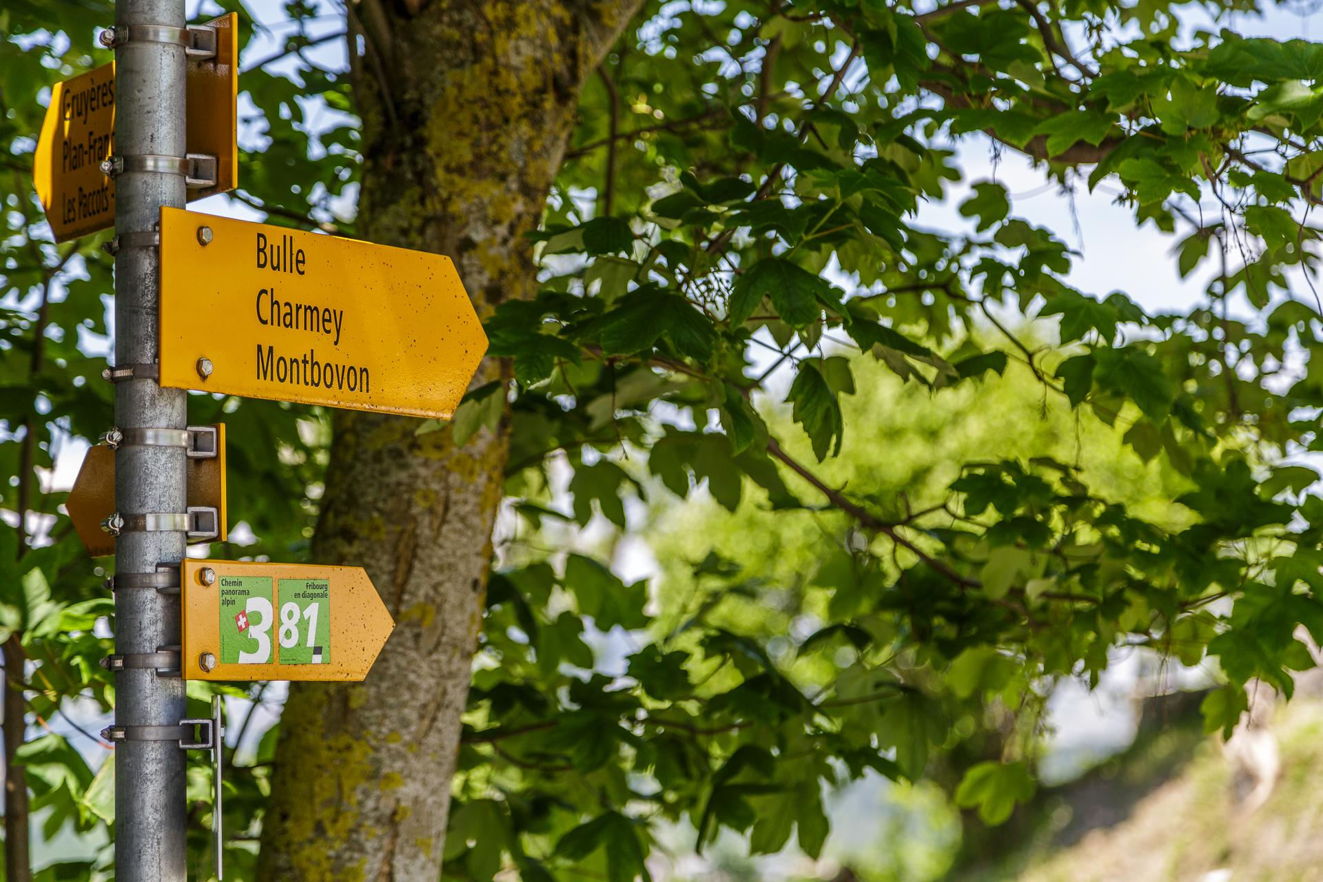 Chemin-de-Gruyeres