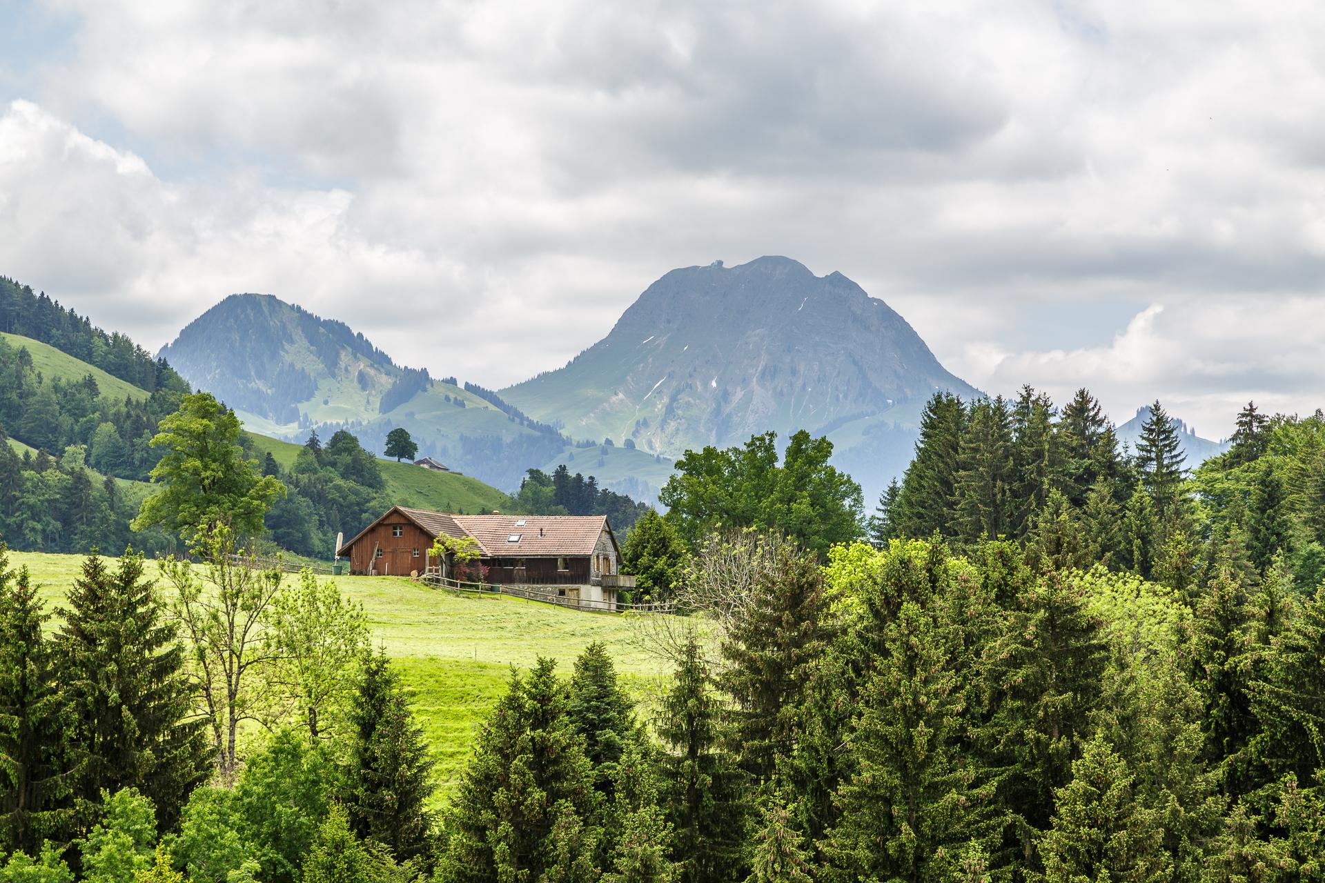 Gruyeres-Alp