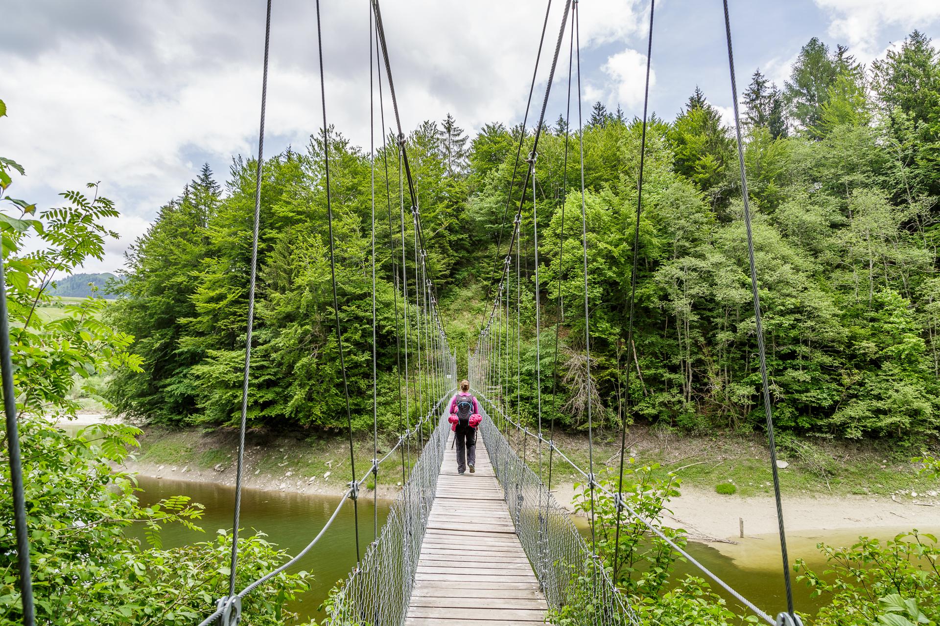 Hängebrücke-Lac-de-Montsalvens