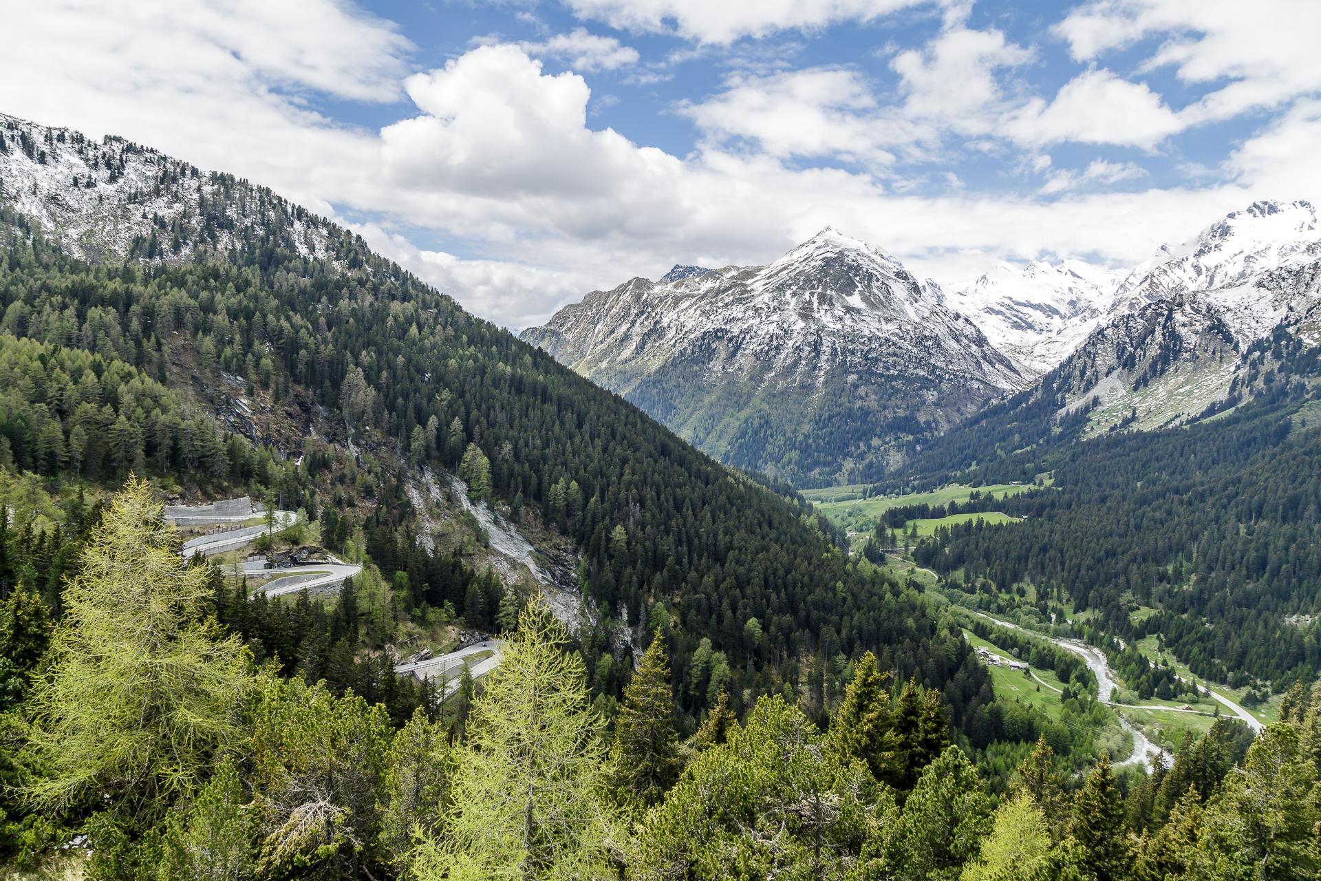 Roadtrip Schweiz Malojapass