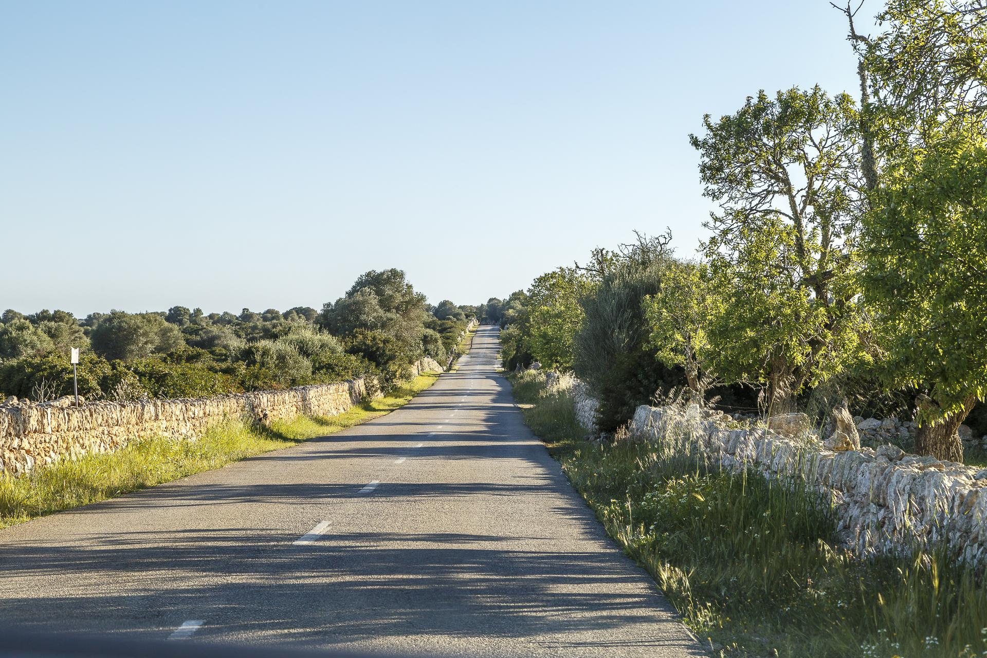 Roadtrip-Mallorca