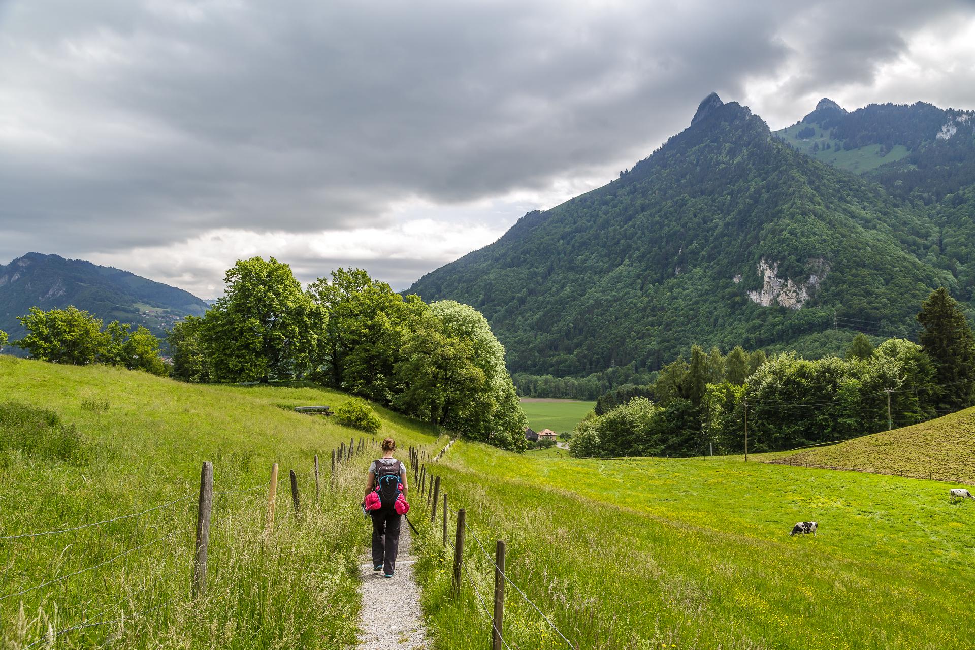 Wanderung-Greyerzerland