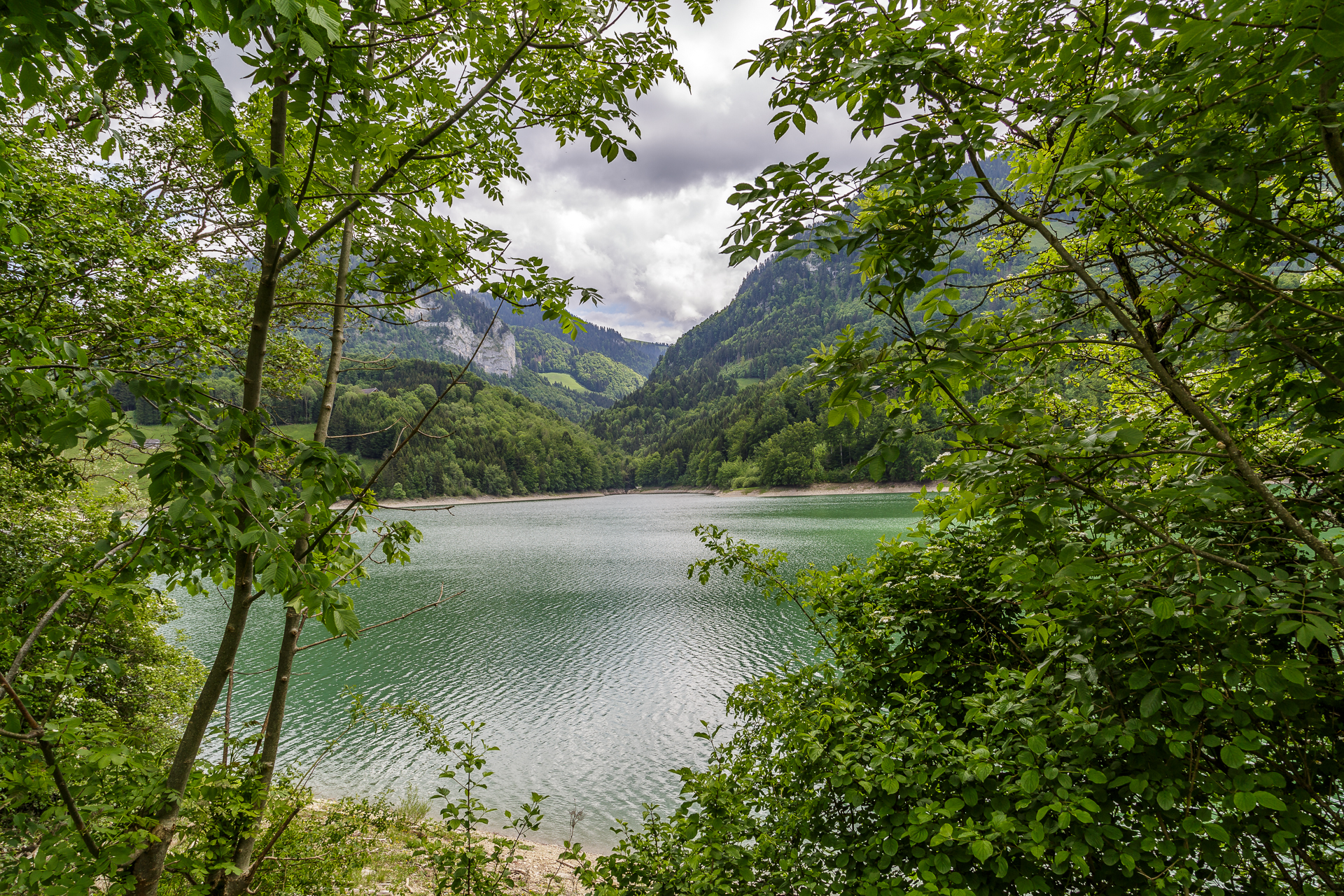 Wanderung-Lac-de-Montsalvens