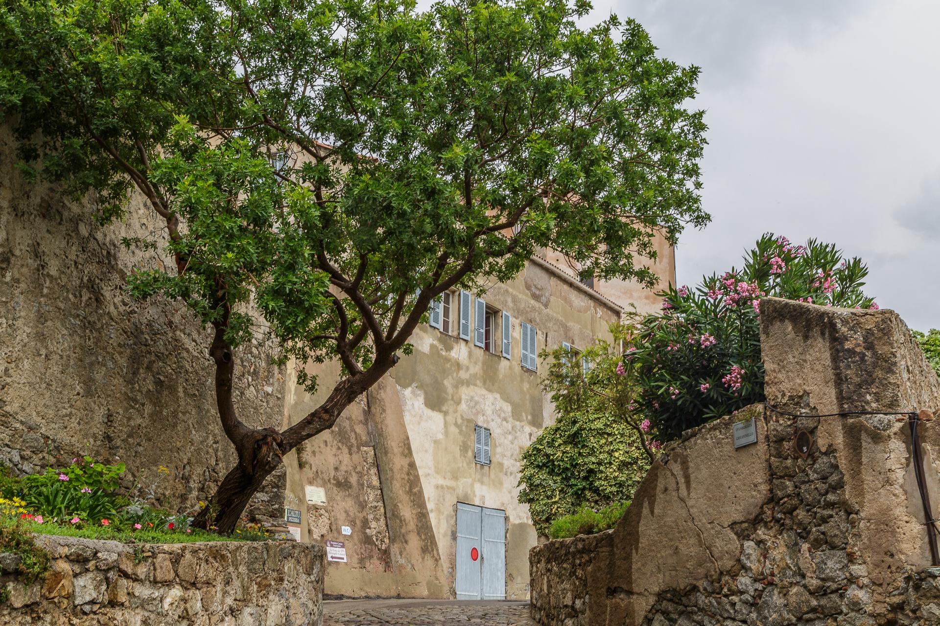 Citadelle-Korsika-1