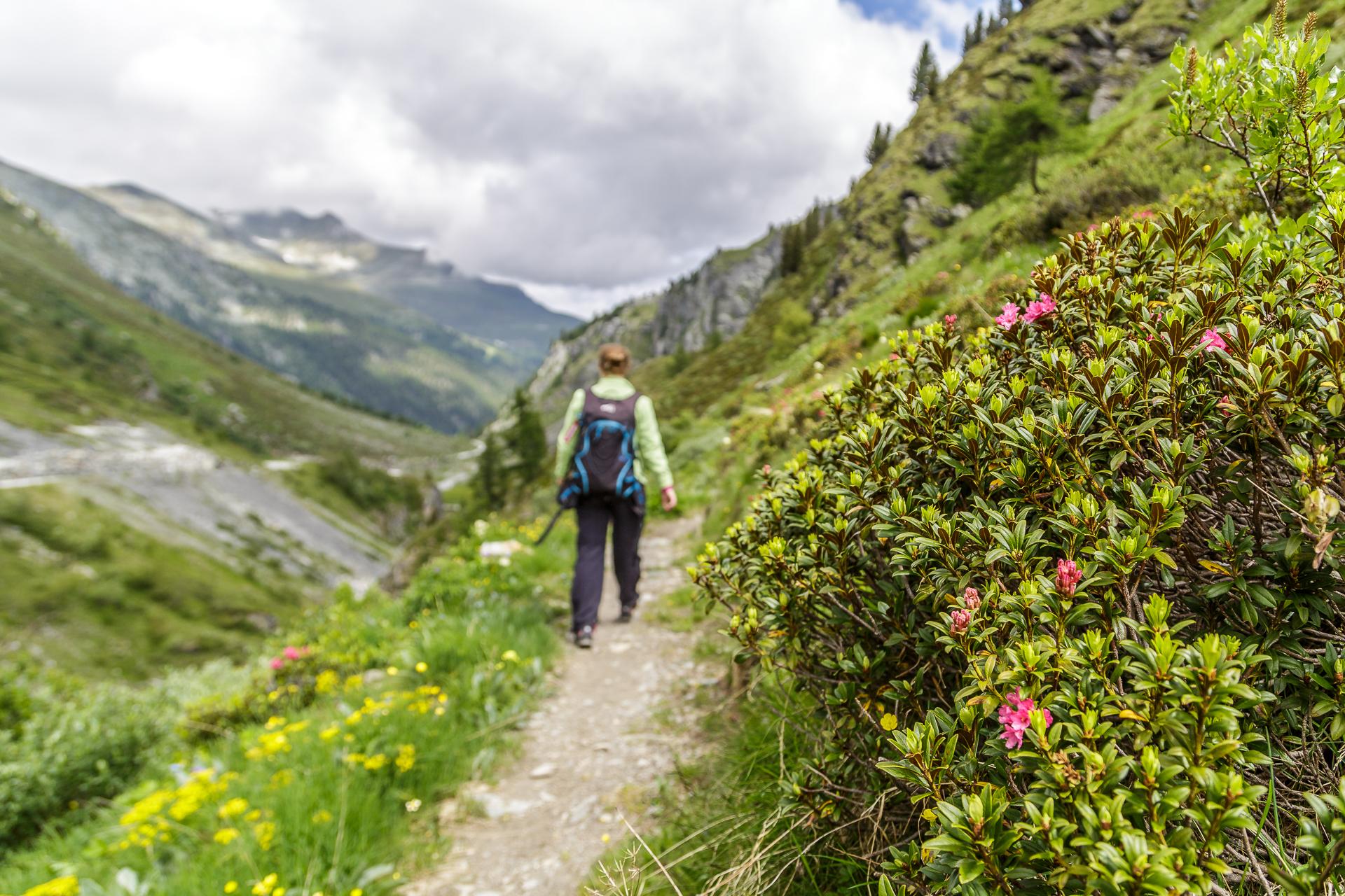 Wanderung-Wallis