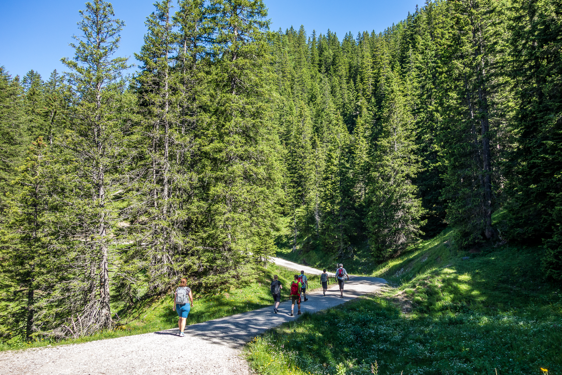 Brandnertal-Naturspruengeweg