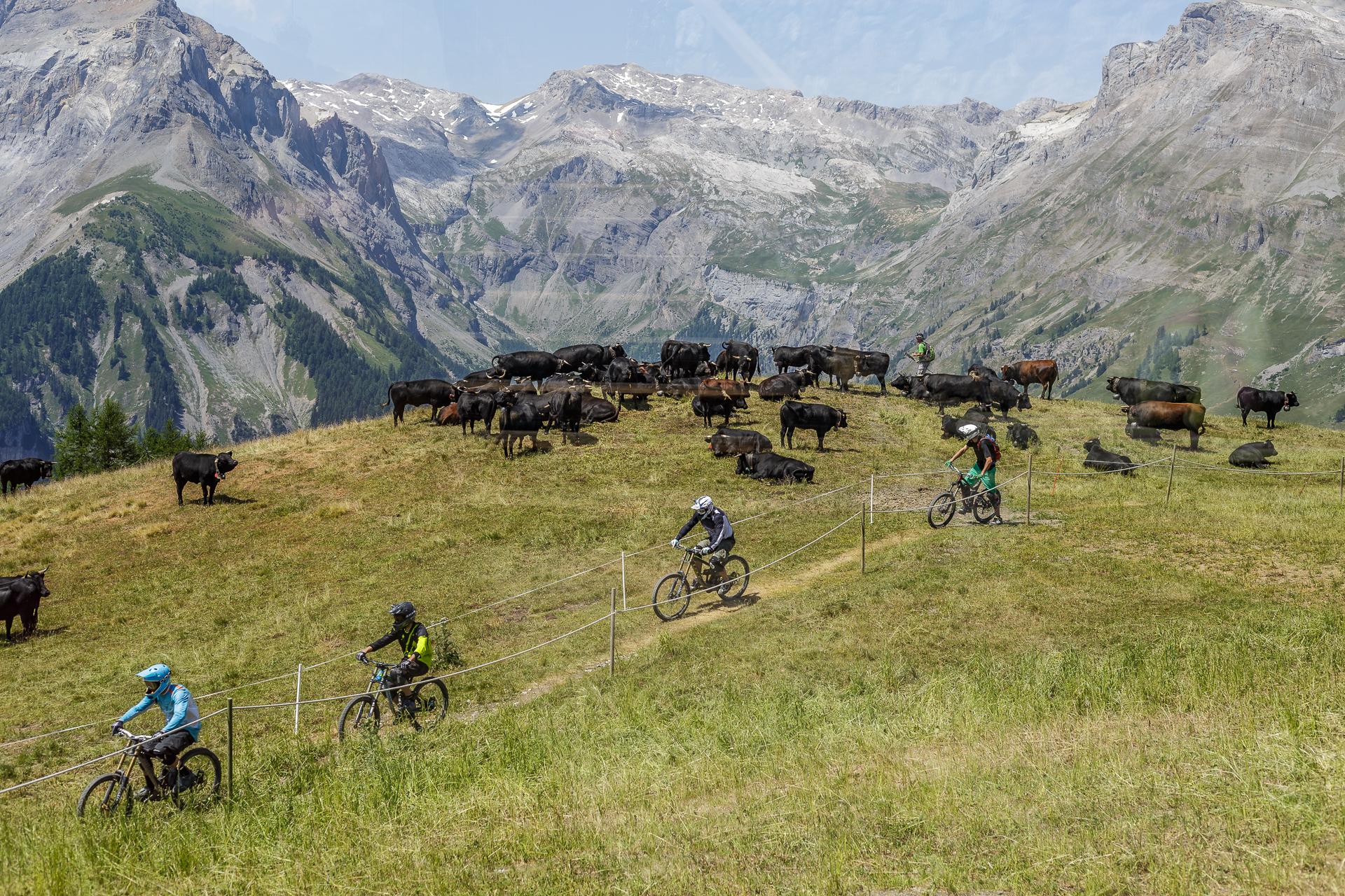Crans-Montana-Bikestrecke