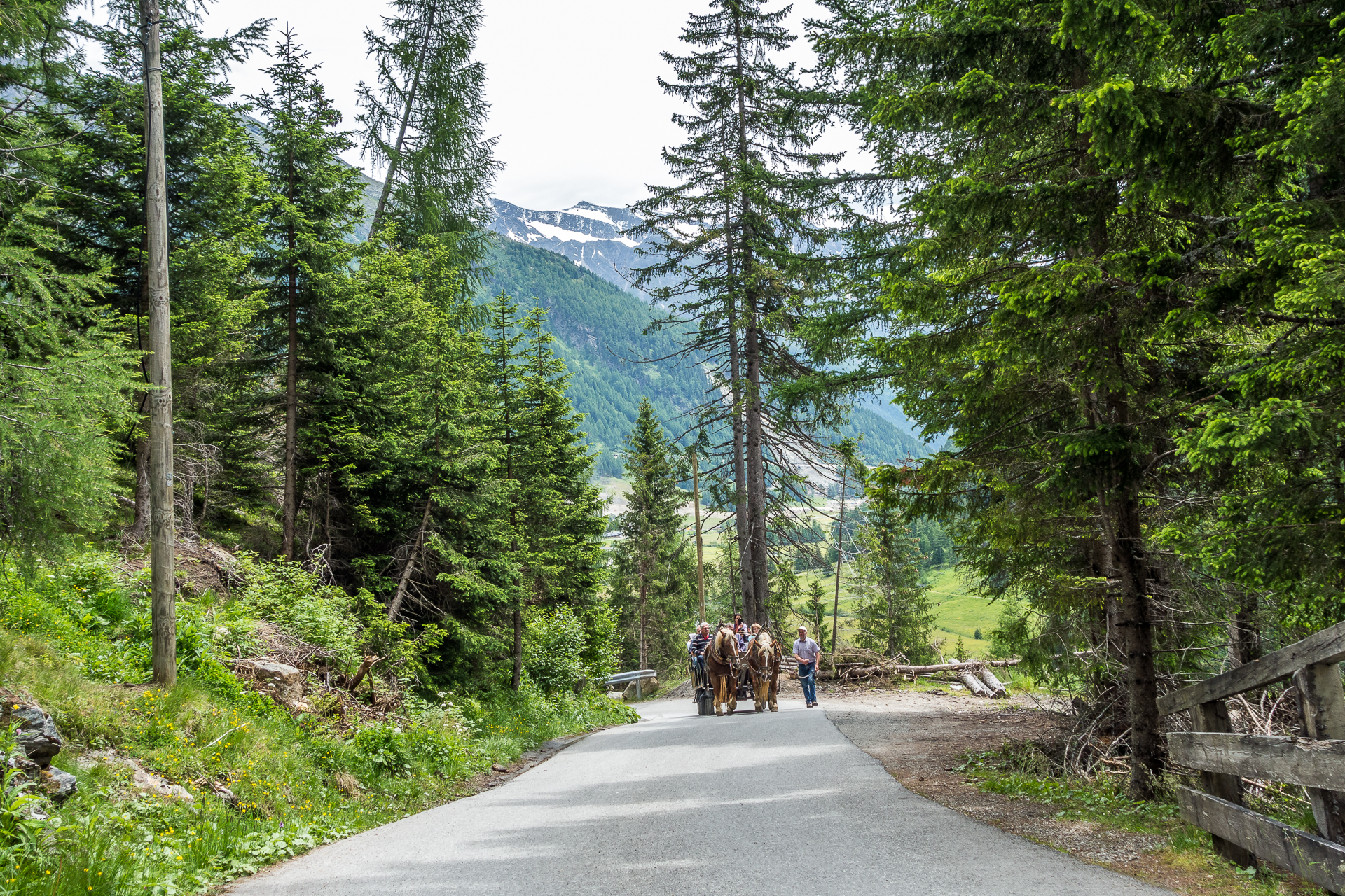 Innergschloess-Pferdekutsche