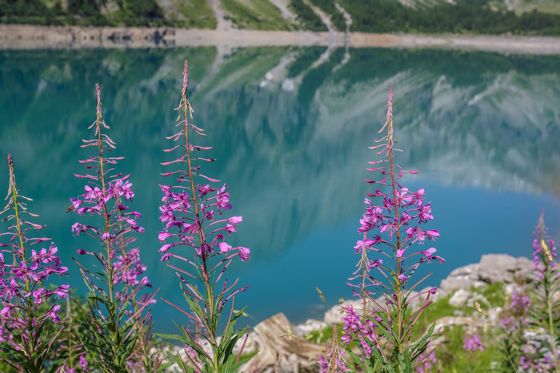 Lac-de-Tseuzier-3