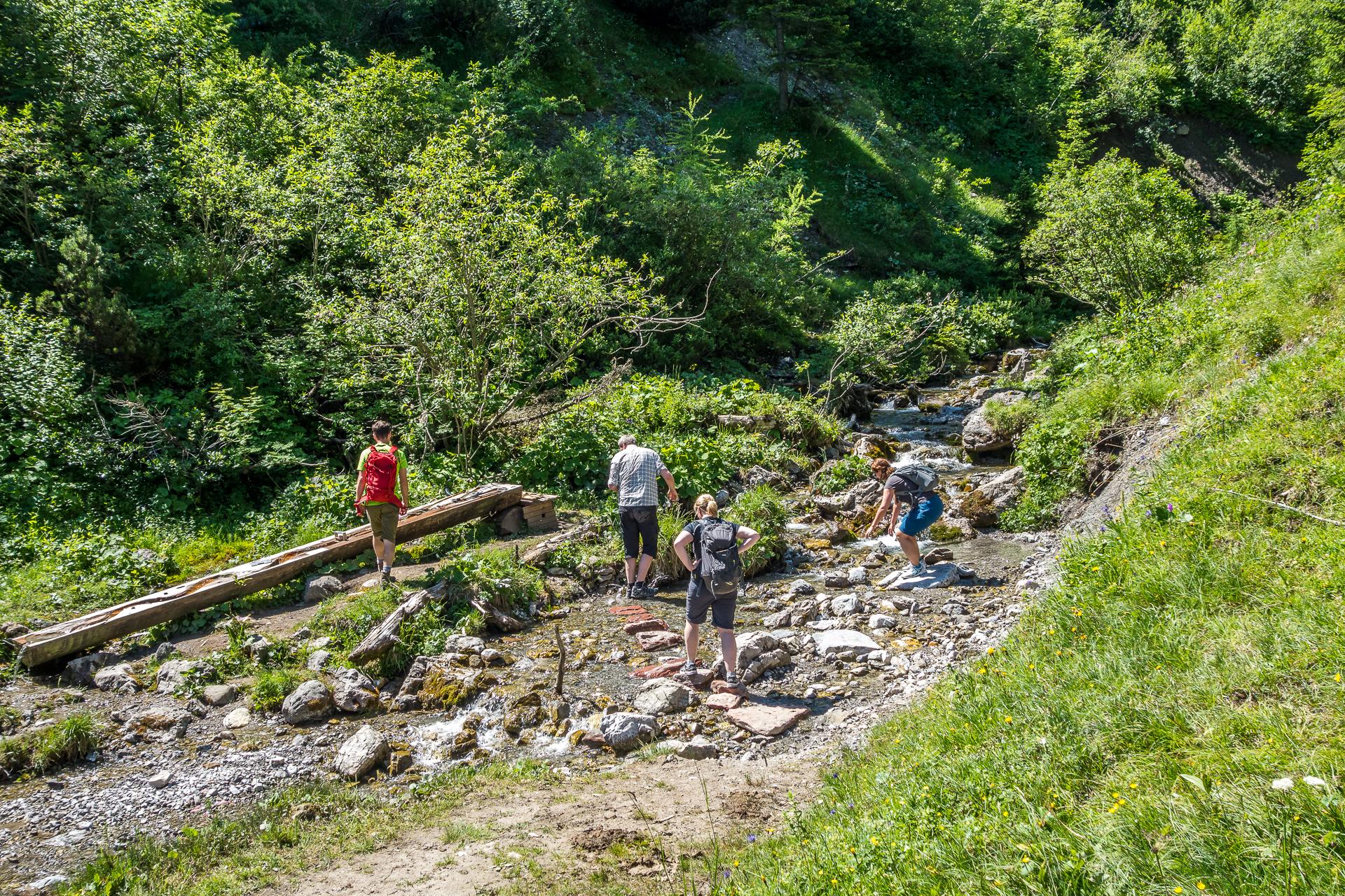 Naturspruengeweg-wasser