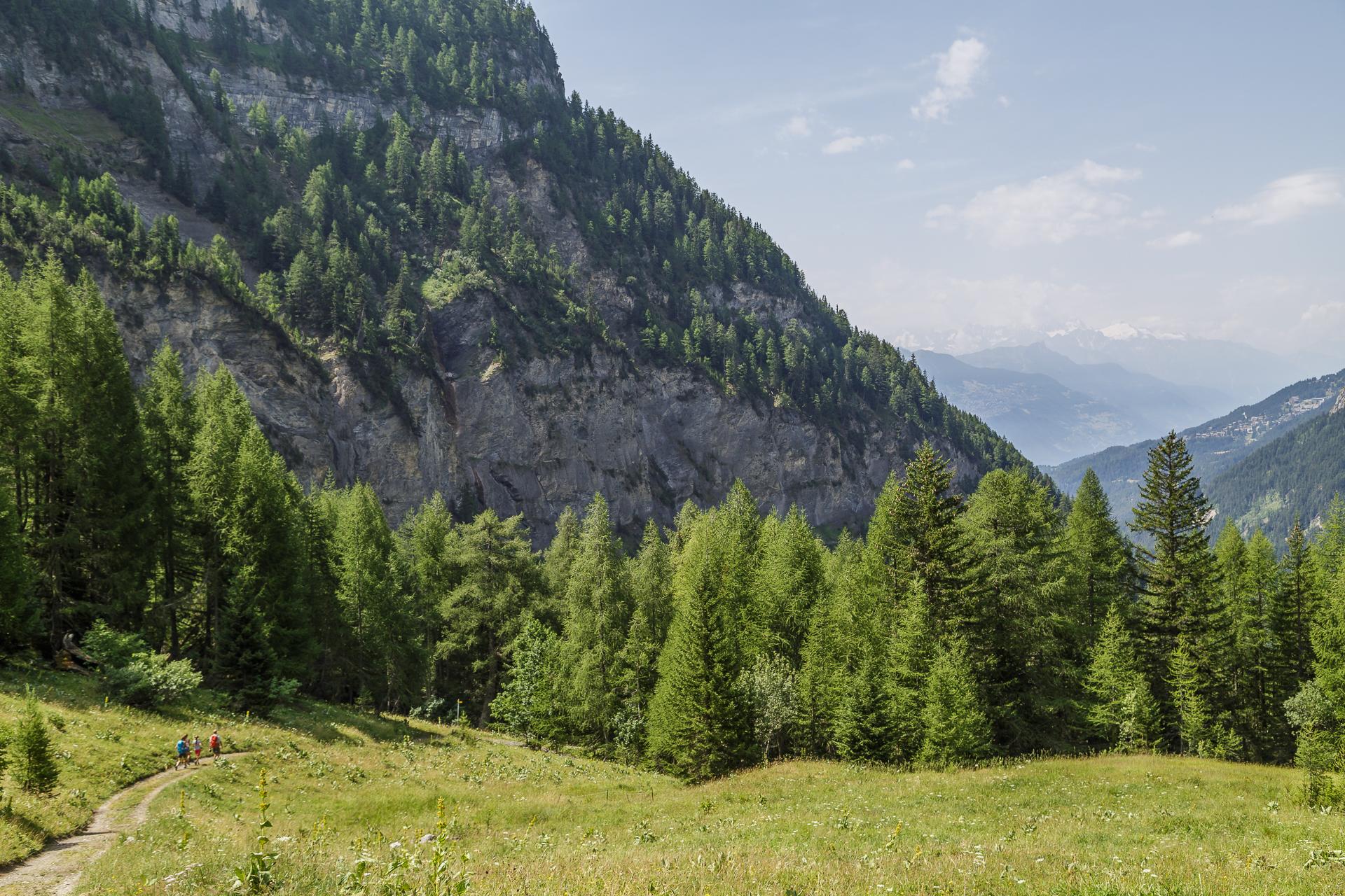 Suonenwanderung-Wallis