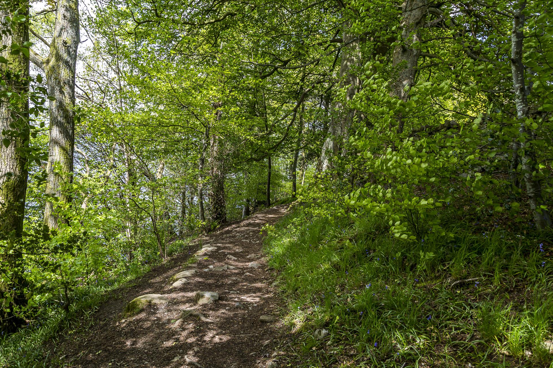Windermere-Wanderweg