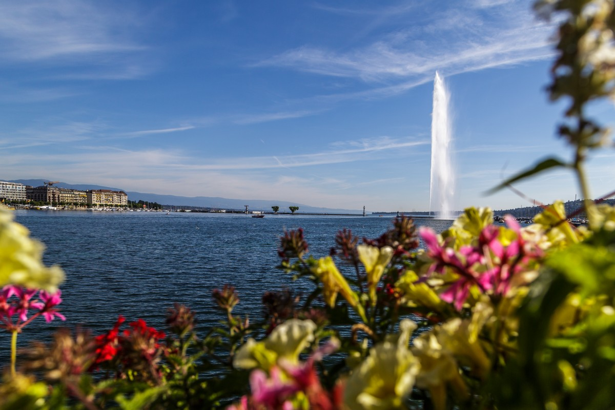 Explore Geneva in 7 easy steps