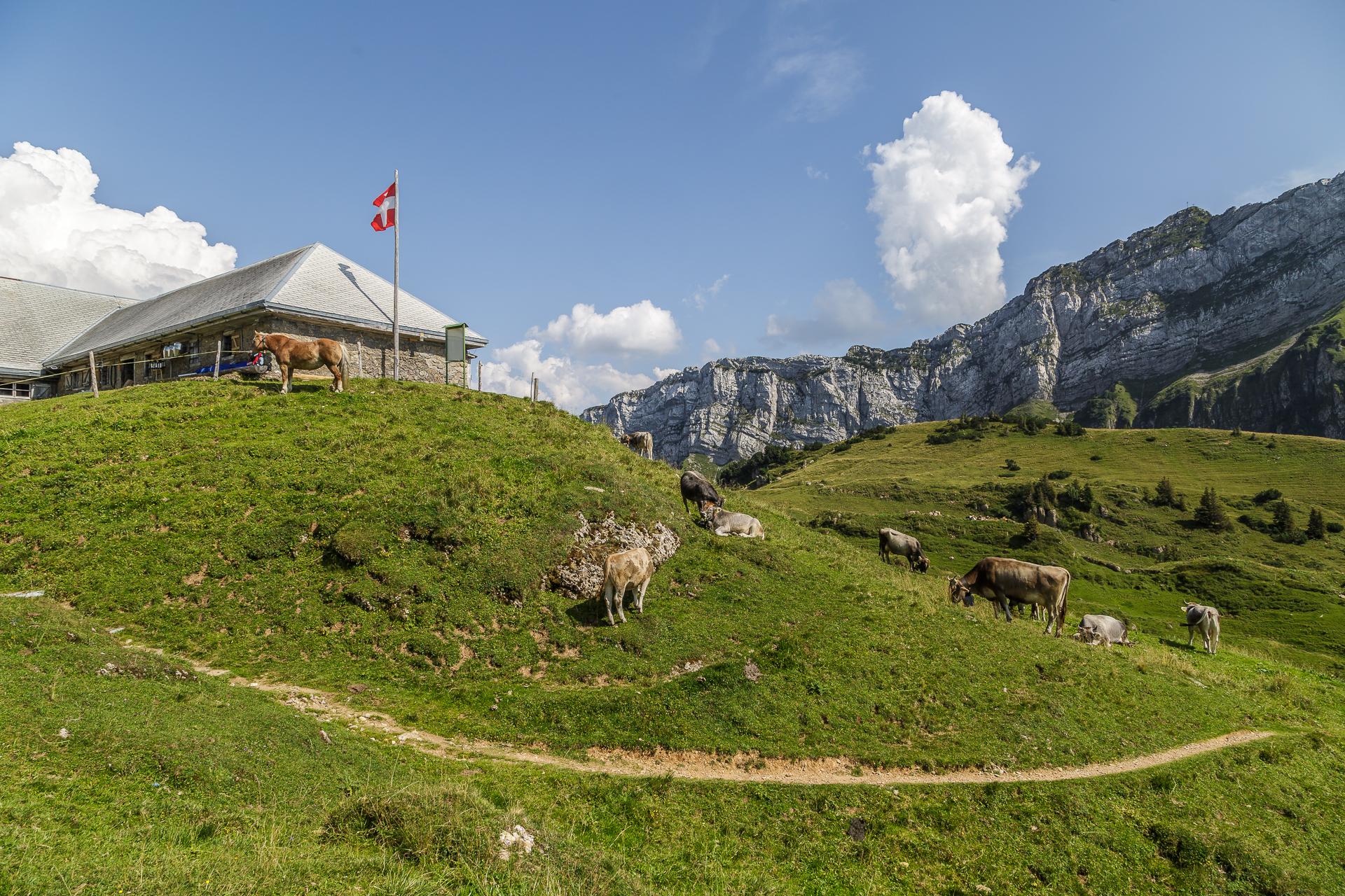 Alp-Oberchaeseren-Weesen