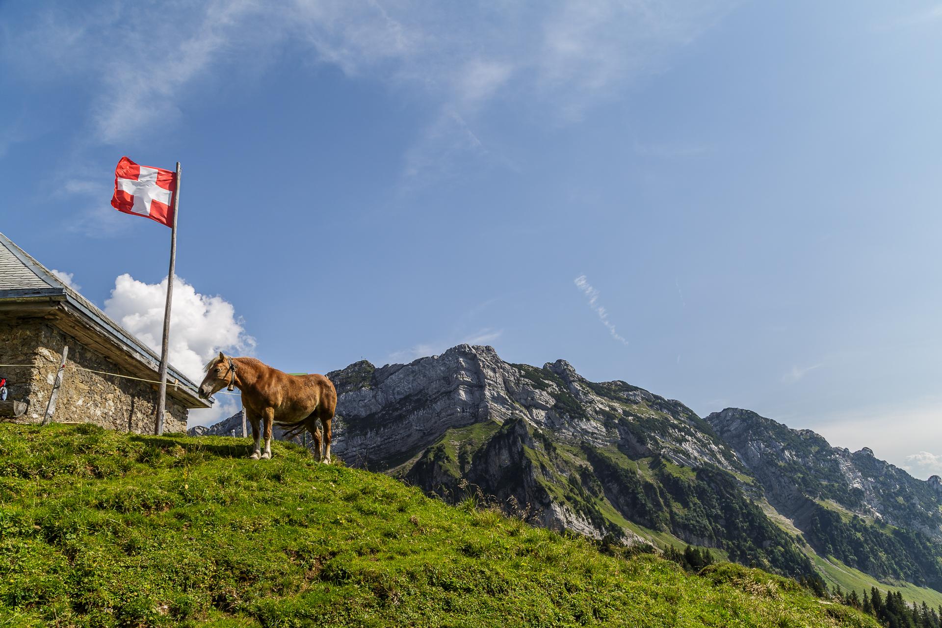 Alp-Oberchaeseren